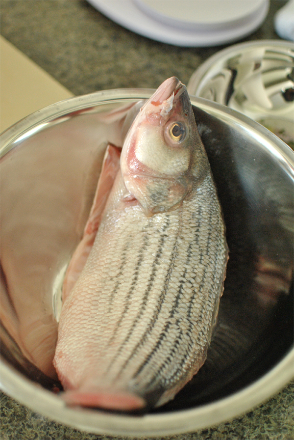 striped sea bass for dinner