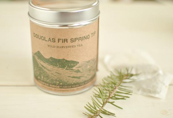 douglas fir spring tip tea